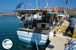 GriechenlandWeb Gialos Ios - Insel Ios - Kykladen Griechenland foto 198 - Foto GriechenlandWeb.de
