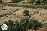 GriechenlandWeb.de Agia Theodoti Ios - Insel Ios - Kykladen Griechenland foto 279 - Foto GriechenlandWeb.de