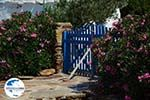 GriechenlandWeb.de Psathi Ios - Insel Ios - Kykladen Griechenland foto 301 - Foto GriechenlandWeb.de