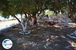 GriechenlandWeb.de Koumbara Beach Chora Ios - Insel Ios - Kykladen foto 433 - Foto GriechenlandWeb.de
