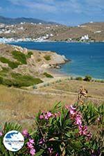 GriechenlandWeb Tzamaria beach Chora Ios - Insel Ios - Kykladen Griechenland foto 443 - Foto GriechenlandWeb.de