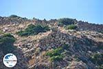 GriechenlandWeb.de Arkasa (Arkassa) | Insel Karpathos | GriechenlandWeb.de 007 - Foto GriechenlandWeb.de