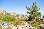 GriechenlandWeb.de Natuur in het oosten van Karpathos | GriechenlandWeb.de 004 - Foto GriechenlandWeb.de