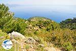 GriechenlandWeb.de Natuur in het oosten van Karpathos | GriechenlandWeb.de 008 - Foto GriechenlandWeb.de