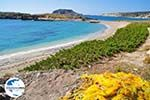 GriechenlandWeb.de Lefkos | Insel Karpathos | GriechenlandWeb.de foto 018 - Foto GriechenlandWeb.de