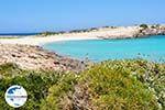 GriechenlandWeb.de Diakofti beach | Strände Karpathos | GriechenlandWeb.de foto 010 - Foto GriechenlandWeb.de