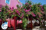 Megisti Kastelorizo - Insel Kastellorizo Dodekanes - Foto 129 - Foto GriechenlandWeb.de