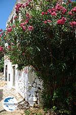 GriechenlandWeb.de Megisti Kastelorizo - Insel Kastellorizo Dodekanes - Foto 131 - Foto GriechenlandWeb.de