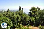 GriechenlandWeb.de Achillion | Gastouri Korfu | GriechenlandWeb.de - foto 36 - Foto GriechenlandWeb.de