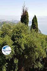 GriechenlandWeb.de Achillion | Gastouri Korfu | GriechenlandWeb.de - foto 37 - Foto GriechenlandWeb.de
