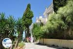 GriechenlandWeb.de Achillion | Gastouri Korfu | GriechenlandWeb.de - foto 65 - Foto GriechenlandWeb.de