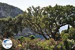 GriechenlandWeb.de Paleokastritsa (Palaiokastritsa) | Korfu | GriechenlandWeb.de - foto 13 - Foto GriechenlandWeb.de