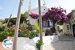 GriechenlandWeb.de Afionas (bij kaap Arilas) | Korfu | GriechenlandWeb.de - foto 3 - Foto GriechenlandWeb.de