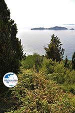 GriechenlandWeb.de Afionas (bij kaap Arilas) | Korfu | GriechenlandWeb.de - foto 9 - Foto GriechenlandWeb.de