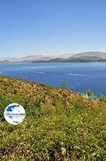 GriechenlandWeb.de Korfu tegenover Albanie | GriechenlandWeb.de - foto 2 - Foto GriechenlandWeb.de