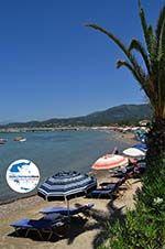 GriechenlandWeb.de Roda | Korfu | GriechenlandWeb.de - foto 8 - Foto GriechenlandWeb.de
