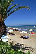 GriechenlandWeb.de Roda | Korfu | GriechenlandWeb.de - foto 9 - Foto GriechenlandWeb.de