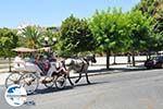GriechenlandWeb.de Korfu Stadt | Korfu | GriechenlandWeb.de - foto 3 - Foto GriechenlandWeb.de