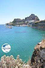 GriechenlandWeb Korfu Stadt | Korfu | GriechenlandWeb.de - foto 91 - Foto GriechenlandWeb.de