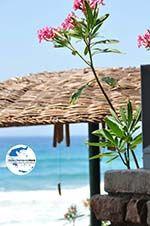 GriechenlandWeb.de Agios Gordis (Gordios) | Korfu | GriechenlandWeb.de - foto 70 - Foto GriechenlandWeb.de