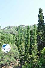 GriechenlandWeb.de Natuur Agios Gordis   Korfu   GriechenlandWeb.de - foto 1 - Foto GriechenlandWeb.de