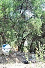 GriechenlandWeb.de Natuur Agios Gordis | Korfu | GriechenlandWeb.de - foto 2 - Foto GriechenlandWeb.de