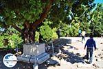 GriechenlandWeb.de Die Odeion | Kos Stadt | Griechenland foto 2 - Foto GriechenlandWeb.de