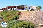 GriechenlandWeb.de Camel Beach Kos   Insel Kos   Griechenland foto 4 - Foto GriechenlandWeb.de