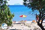 GriechenlandWeb.de Paradise Beach Kos   Insel Kos   Griechenland foto 11 - Foto GriechenlandWeb.de