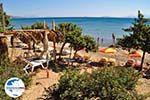 GriechenlandWeb.de Paradise Beach Kos | Insel Kos | Griechenland foto 13 - Foto GriechenlandWeb.de