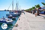 GriechenlandWeb.de Kardamena Kos | Insel Kos | Griechenland Foto 1 - Foto GriechenlandWeb.de
