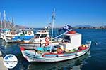 GriechenlandWeb.de Kardamena Kos | Insel Kos | Griechenland Foto 3 - Foto GriechenlandWeb.de