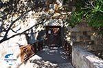 GriechenlandWeb.de Kos Stadt (Kos-Stadt) | Insel Kos | Griechenland foto 18 - Foto GriechenlandWeb.de