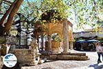 GriechenlandWeb.de Kos Stadt (Kos-Stadt) | Insel Kos | Griechenland foto 25 - Foto GriechenlandWeb.de
