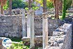 GriechenlandWeb Kos Stadt (Kos-Stadt) | Insel Kos | Griechenland foto 35 - Foto GriechenlandWeb.de