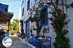 GriechenlandWeb.de Kos Stadt (Kos-Stadt) | Insel Kos | Griechenland foto 54 - Foto GriechenlandWeb.de