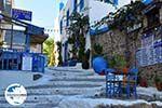 GriechenlandWeb.de Kos Stadt (Kos-Stadt) | Insel Kos | Griechenland foto 60 - Foto GriechenlandWeb.de