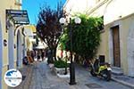 GriechenlandWeb Kos Stadt (Kos-Stadt) | Insel Kos | Griechenland foto 82 - Foto GriechenlandWeb.de