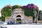GriechenlandWeb.de Kos Stadt (Kos-Stadt) | Insel Kos | Griechenland foto 93 - Foto GriechenlandWeb.de