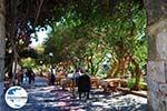 GriechenlandWeb.de Kos Stadt (Kos-Stadt) | Insel Kos | Griechenland foto 97 - Foto GriechenlandWeb.de