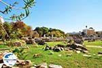 GriechenlandWeb.de Kos Stadt (Kos-Stadt) | Insel Kos | Griechenland foto 99 - Foto GriechenlandWeb.de