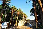 GriechenlandWeb.de Kos Stadt (Kos-Stadt) | Insel Kos | Griechenland foto 140 - Foto GriechenlandWeb.de