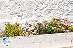 GriechenlandWeb.de Agia Moni Diakofti | Kythira | GriechenlandWeb.de 10 - Foto GriechenlandWeb.de