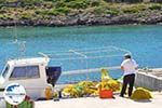 GriechenlandWeb.de Avlemonas Kythira | Griechenland | GriechenlandWeb.de 41 - Foto GriechenlandWeb.de