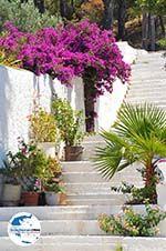 GriechenlandWeb Kapsali Kythira   Griechenland   GriechenlandWeb.de foto 31 - Foto GriechenlandWeb.de