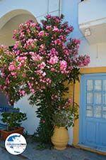 GriechenlandWeb Kapsali Kythira   Griechenland   GriechenlandWeb.de foto 67 - Foto GriechenlandWeb.de