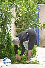 GriechenlandWeb Karvounades Kythira | Griechenland | GriechenlandWeb.de foto 8 - Foto GriechenlandWeb.de