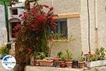 GriechenlandWeb Karvounades Kythira | Griechenland | GriechenlandWeb.de foto 26 - Foto GriechenlandWeb.de