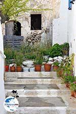 GriechenlandWeb.de Kythira Stadt (Chora) | Griechenland | GriechenlandWeb.de 31 - Foto GriechenlandWeb.de