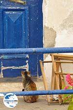 GriechenlandWeb.de Mylopotamos Kythira | Griechenland | GriechenlandWeb.de foto 6 - Foto GriechenlandWeb.de
